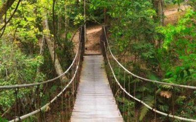 Parc national Khao yai